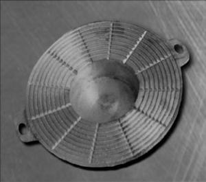 disc picnic (picnic disk)